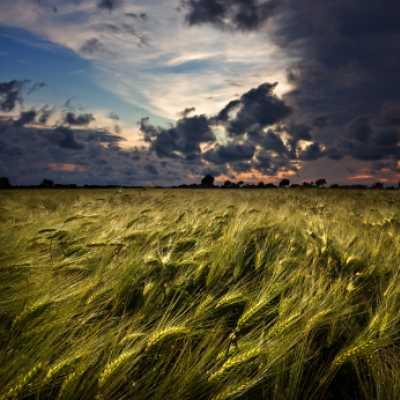 Bild: Sturm, iStockphoto.com /  cinoby