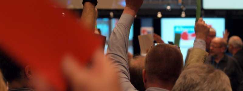 Bild: Abstimmung auf dem Gründungsparteitag der