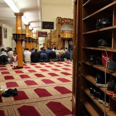 Bild: Gläubige Muslime beim Gebet in einer Berliner Moschee, über dts Nachrichtenagentur
