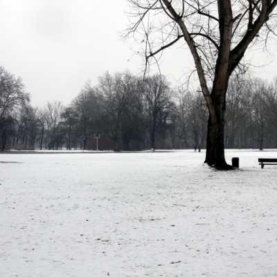 Bild: Winterlandschaft, über dts Nachrichtenagentur