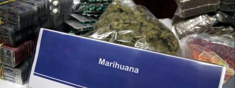 Bild: Marihuana, über dts Nachrichtenagentur
