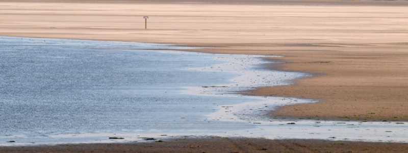 Bild: Ein Strand an der Nordsee, über dts Nachrichtenagentur