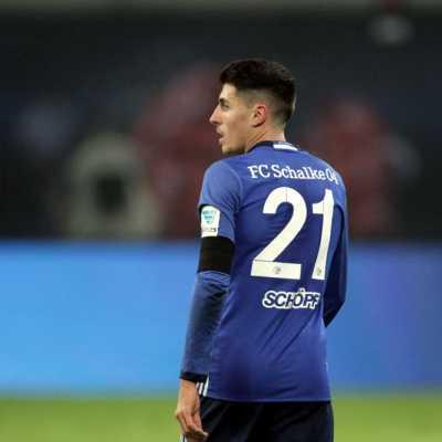 Bild: Alessandro Schöpf (Schalke), über dts Nachrichtenagentur