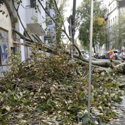 Bild: Schäden nach Sturmtief Xavier, über dts Nachrichtenagentur