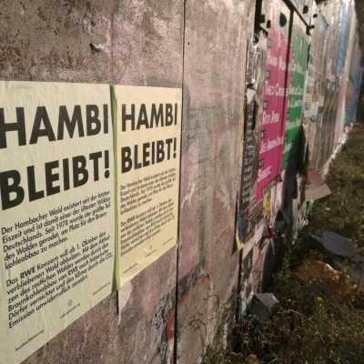 Bild: Protest für den Hambacher Forst, über dts Nachrichtenagentur