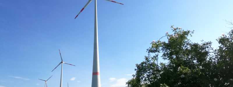 Bild: Windräder bei Tantow in Brandenburg, über dts Nachrichtenagentur