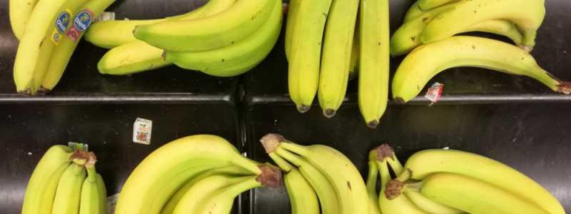Bild: Bananen in einem Supermarkt, über dts Nachrichtenagentur