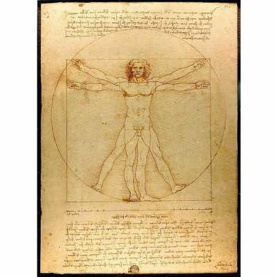Bild: Der vitruvianische Mensch, Leonardo Da Vinci